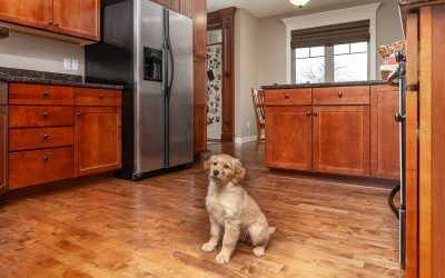 Why is Hardwood Good for Your Health?